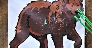 LM Feld- und Waldrunde 2020 an die SG Calvörde vergeben